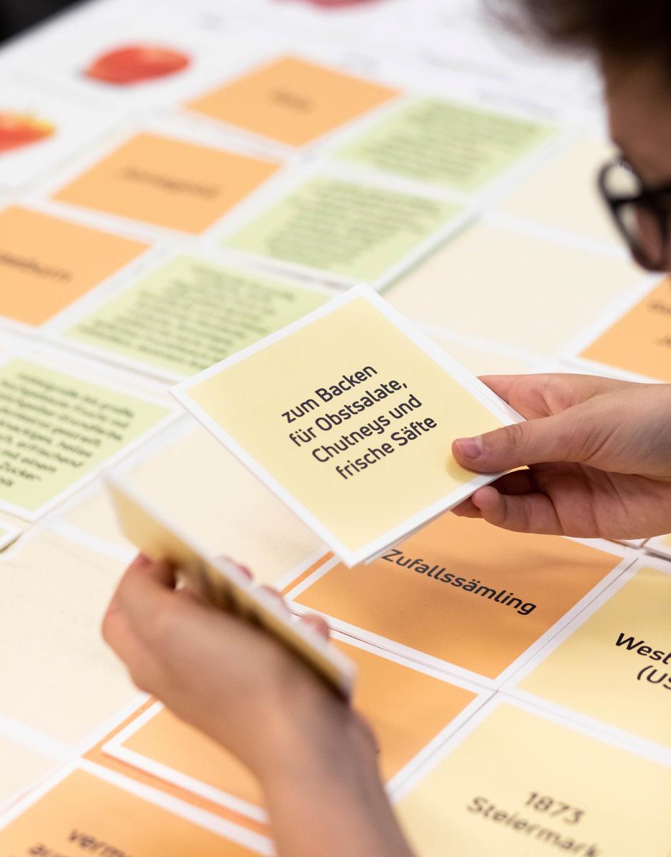"""Wissenskisten """"Flagship Products"""" für die Qualifizierungsagentur von der Werbeagentur look! design"""