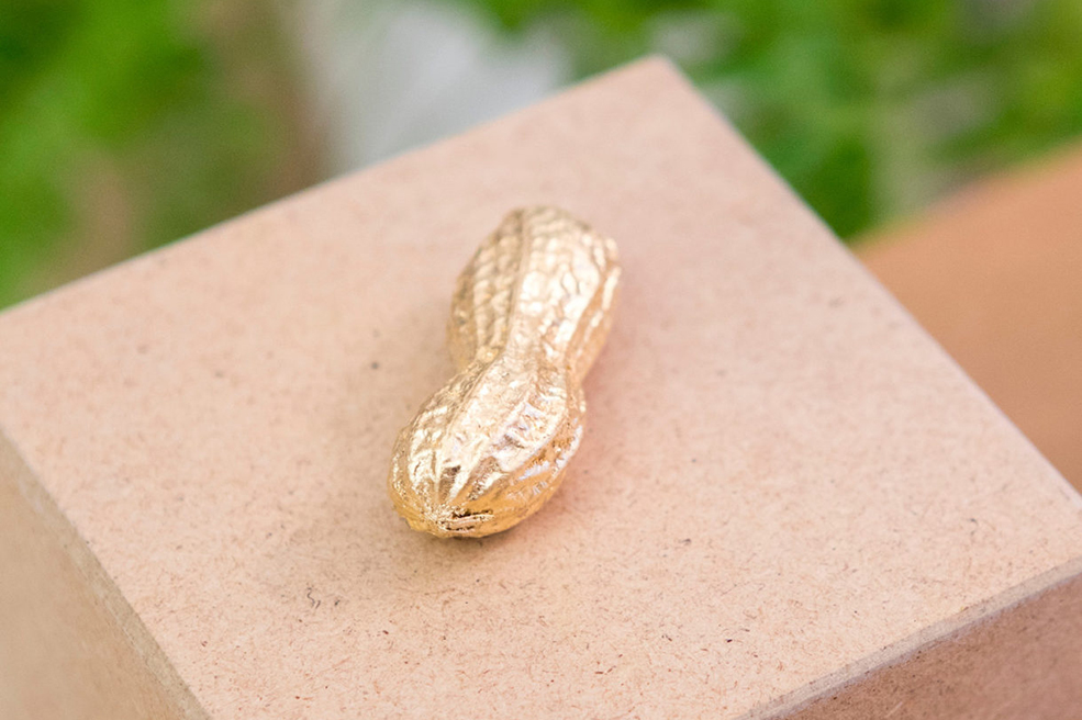 Werbeagentur look! design: Goldene Erdnuss