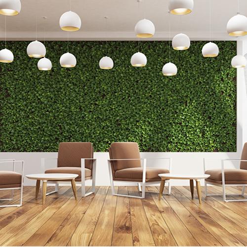 Grünes Büro: Beispielbild für Pflanzen am Arbeitsplatz
