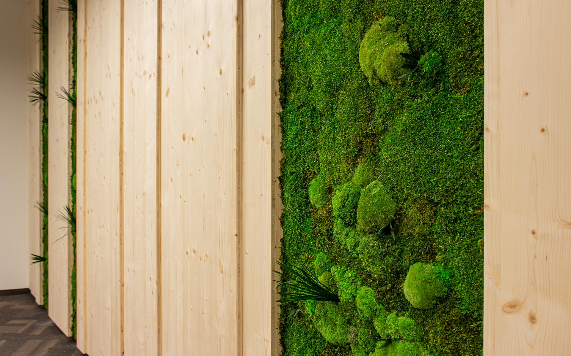 Holzwand mit Mooselementen im Büro von CREE von look! design