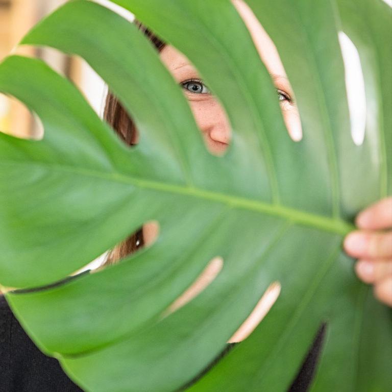 Grünes Büro - Wie Pflanzen am Arbeitsplatz die Produktivität steigern: Blogbeitrag der Designagentur look! design
